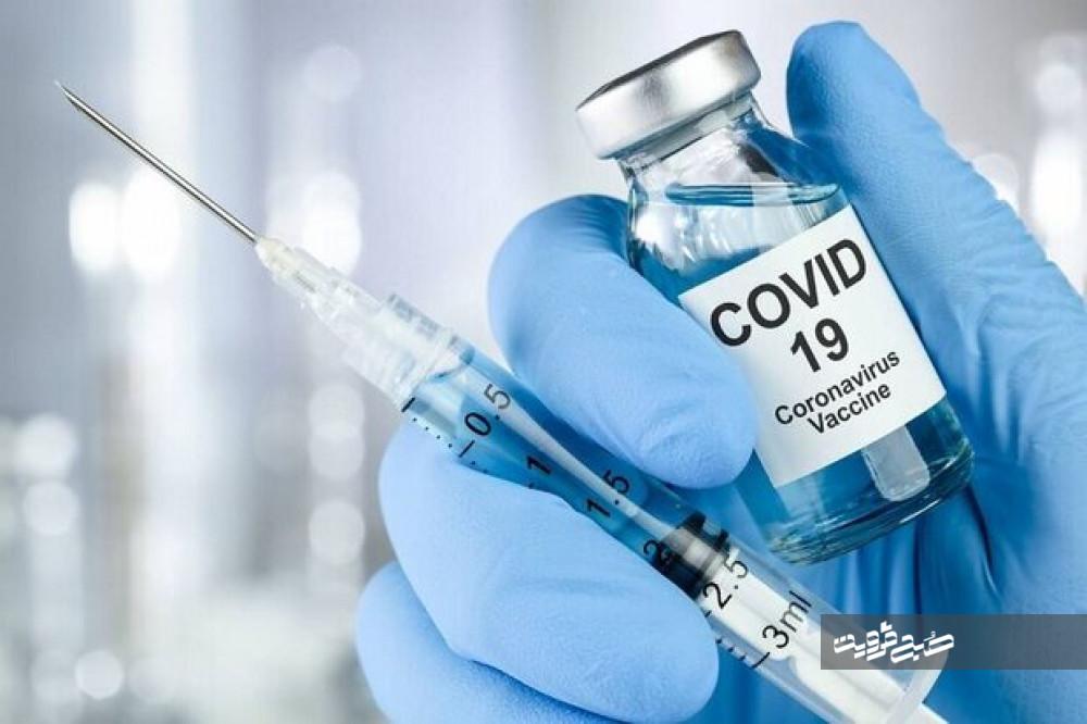 ۵۰ درصد سالمندان آوجی علیه کرونا واکسینه شدند