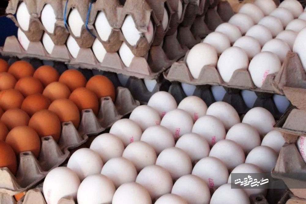 قیمت تخم مرغ به مرز ۴۵ هزار تومان رسید+لیست نرخ اقلام اساسی