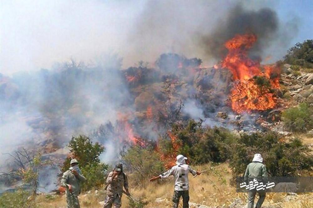 آتش به ۱۲ هکتار از باغات الموت خسارت وارد کرد