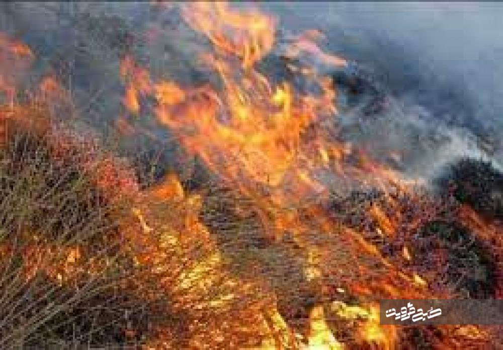 آتشسوزی بوستان فدک مهار شد