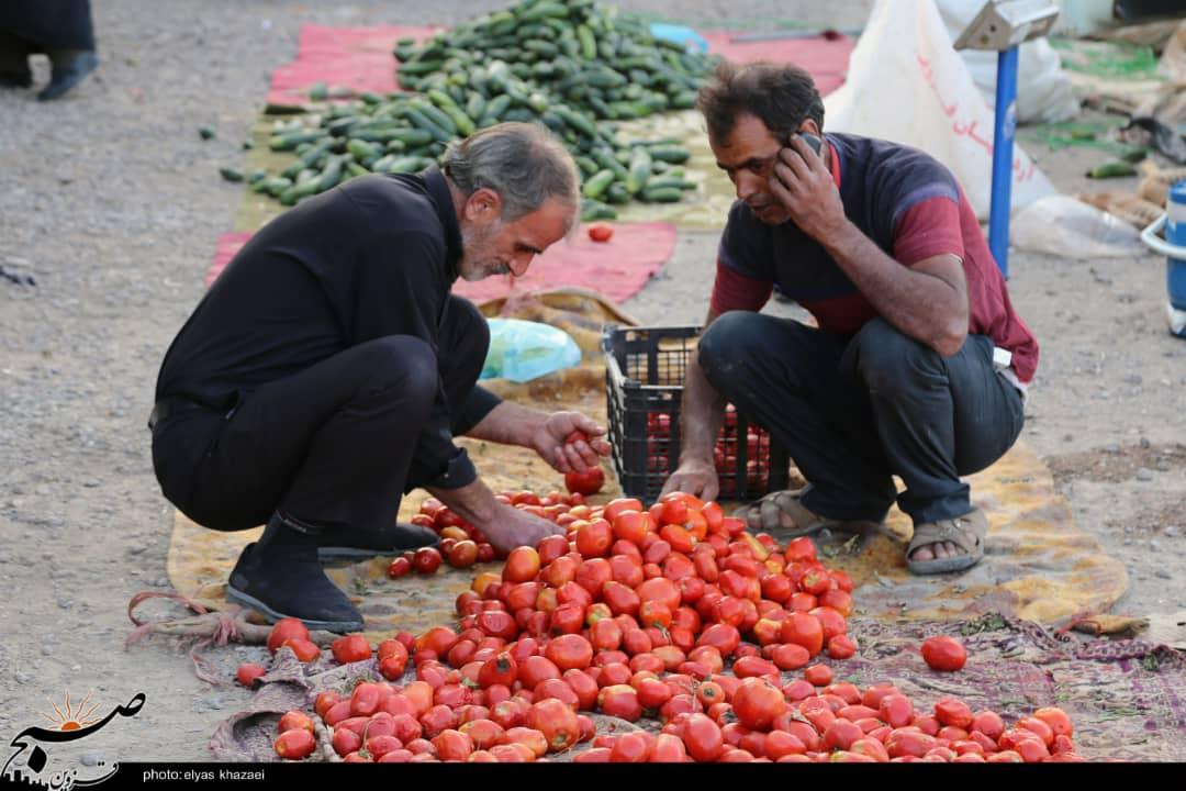 کرونا همچنان میتازد/ رونق سهشنبه بازار قزوین و دهنکجی به پروتکلهای بهداشتی