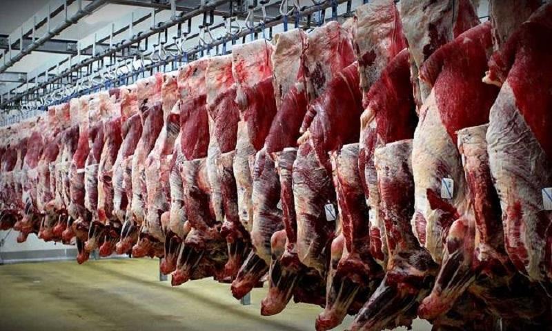 واردات گوشت بهصورت دام زنده برای رفع گرانیها درحال انجام است