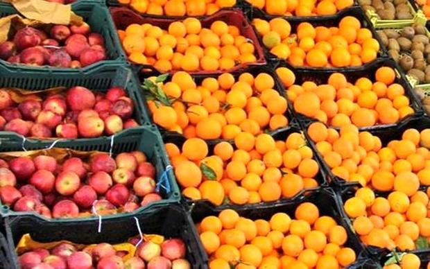 توزیع میوه طرح تنظیم بازار همچنان ادامه دارد