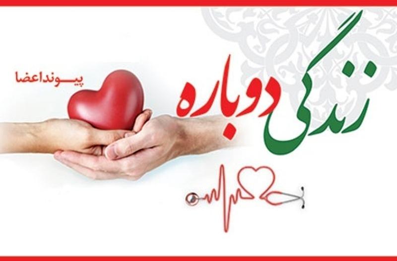 تاکنون ۷۲ اهدای عضو در قزوین انجام گرفته است/ راهاندازی واحد پیوند کلیه در استان