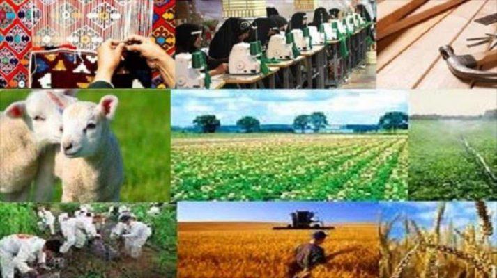 """اجرای طرح """"رَستا"""" برای اولینبار در قزوین/ پس از  ۳۵سال موفق به تولید گندم و عسل و پرورش دام در روستاهای بایر شدیم"""