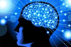 خوردنیهایی که مغزتان را مثل یک کامپیوتر به کار می اندازد