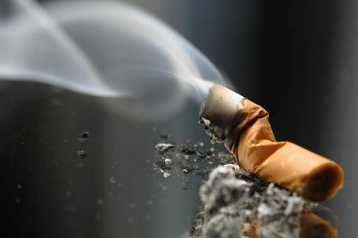 سیگار؛ عامل ۹۵ درصد ابتلا به سرطان ریه/ عدمتحرک از دلایل مهم افزایش انواع سرطانهاست