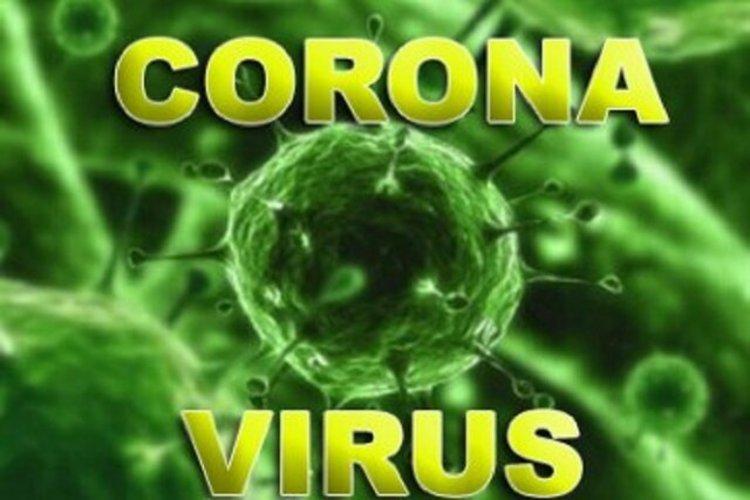در صورت ابتلا به ویروس کرونا چه کار کنیم؟+عکس
