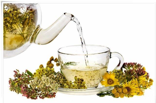 با خواص اعجابانگیز گیاهان دارویی آشنا شویم