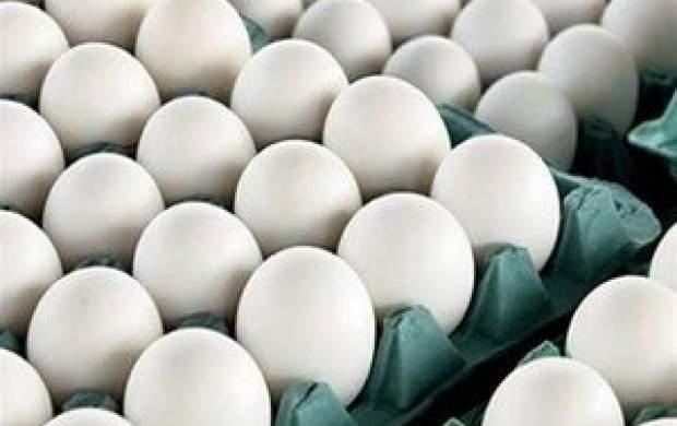 قاچاق تخممرغ؛ هر شانه ۷۰ هزار تومان